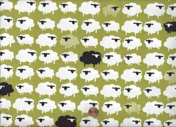 Bio Baumwolle Schafe grün-weiß
