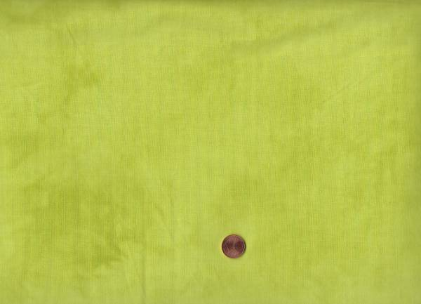 Marcia Derse Palette lemongrass