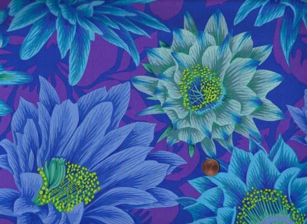 Ph. Jacobs Cactus Flower pj96 blue