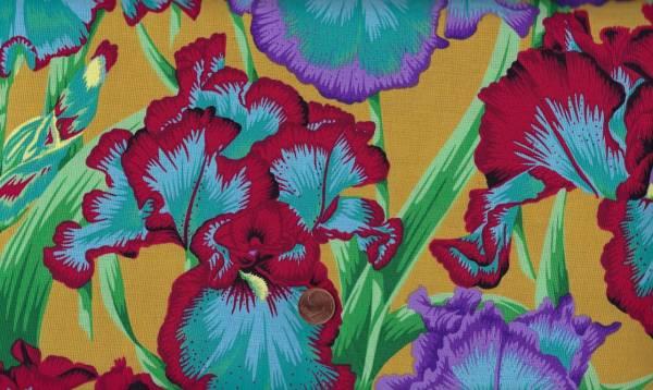 Philip Jacobs Bearded Iris pj105 ochre