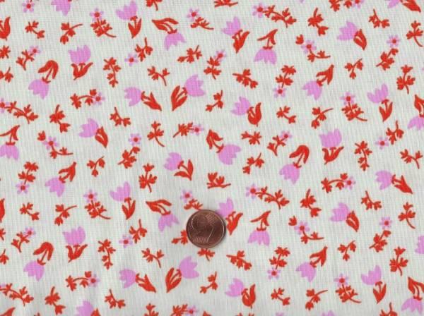 Ruby star society Kimberly Kight Smol Tulip Calico shell