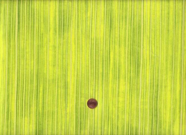 Synchronicity Stripes meadow
