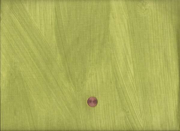 Carrie Bloomston Dreamer Shadow grün