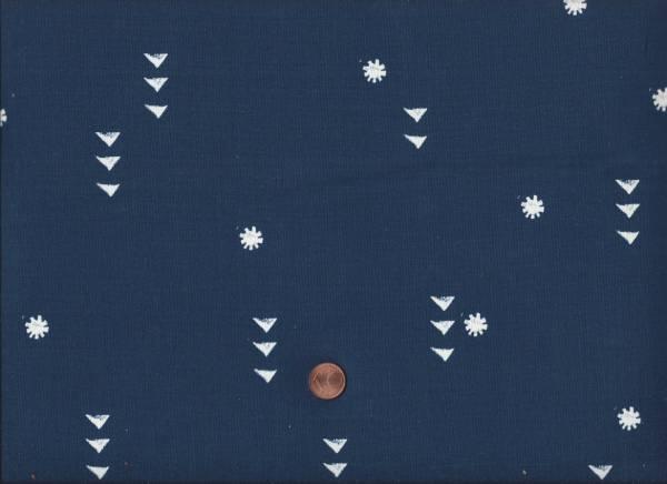 Moonrise Rain Night