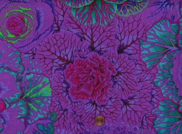 Ph. Jacobs Brassica pj51 purple