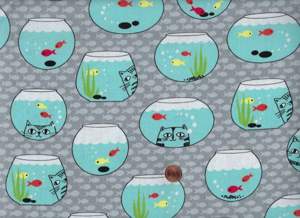 Cat Fisch Fischglas