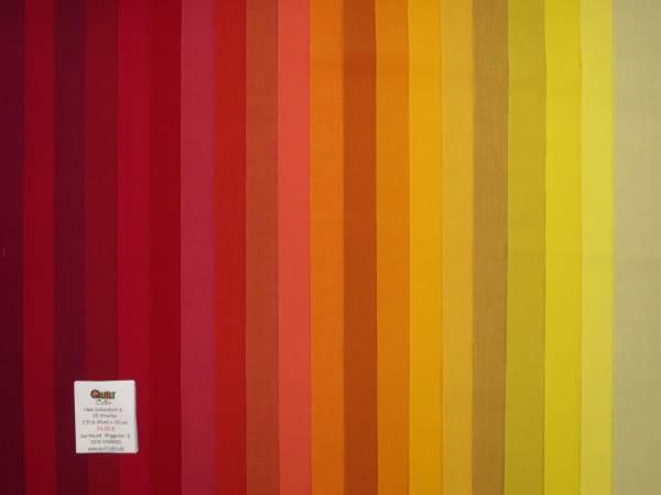 Streifen New Colourshott 6