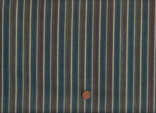Denyse Schmidt Chicopee Shirt Stripe green