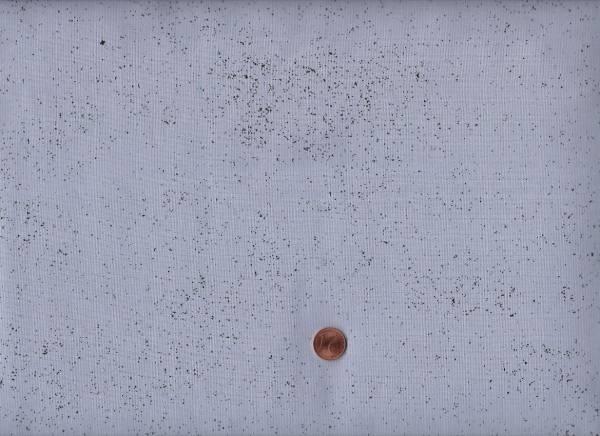 Giucy Giuce Spectrastatic Lunar