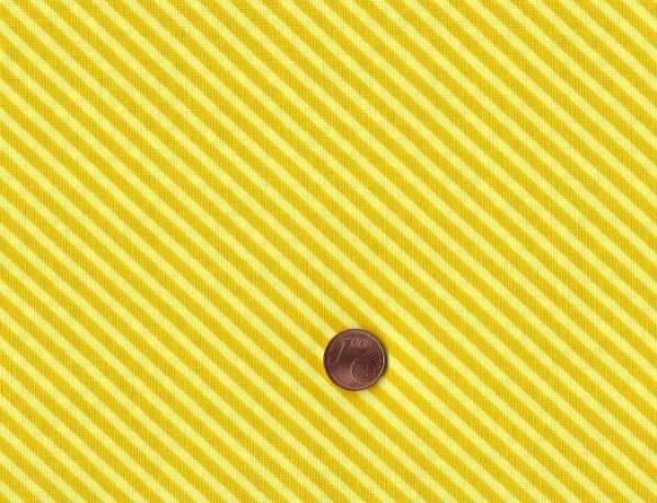 Candystripe sunflower
