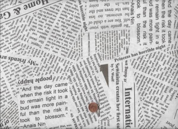 Carrie Bloomston Story Newsprint cream
