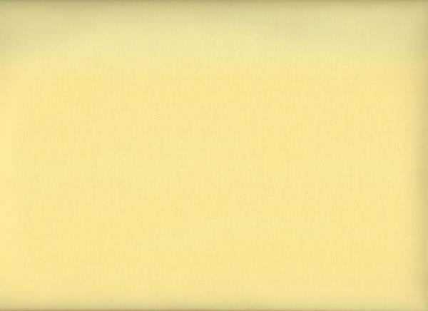 Superior Solids 03 light yellow
