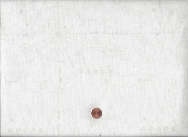 Alison Glass Sun Print Compass l coconut