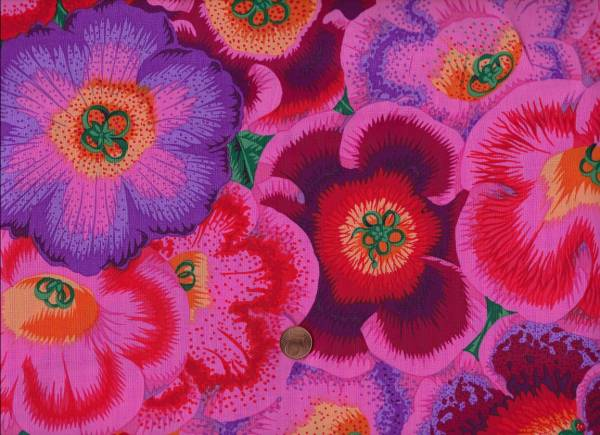 Philip Jacobs Gloxinias pj71 pink