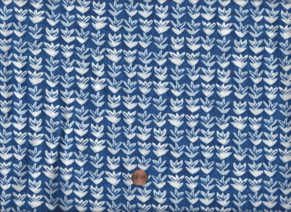 Ella blau-weiß Tulpe