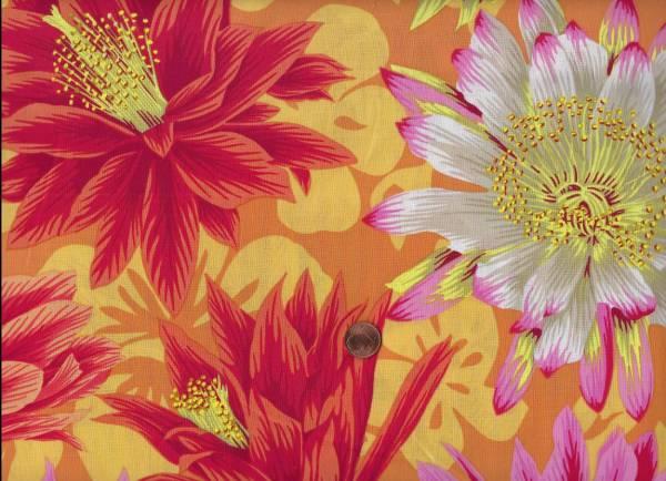 Philip Jacobs Cactus Flower pj96 yellow