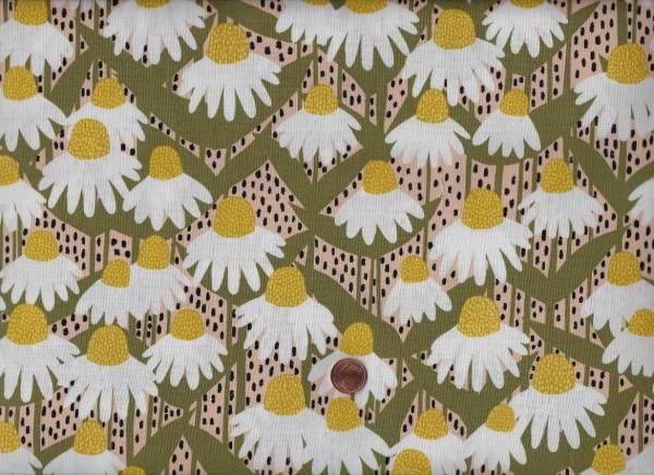 Sarah Golden Perennial Coneflower suns