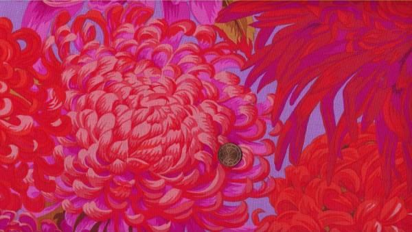 Philip Jacobs Jap. Chrysantemum pj41 pink