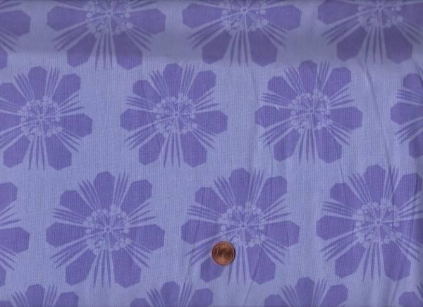 Calypso Blumen lila