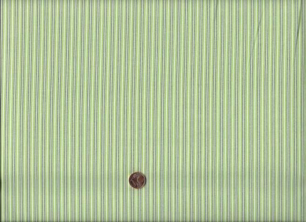 Denyse Schmidt Florence Stripe green