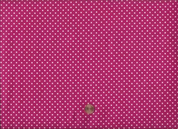 Spot on raspberry p68